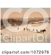 Photochrom Of People And Horses On Folgefond Glacier Royalty Free Historical Stock Photography
