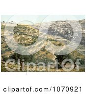 Photochrom Of Siloam And The Tyrophean Valley Jerusalem Royalty Free Historical Stock Photo by JVPD