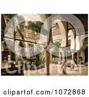 Photochrom Of The Museum Entrance Hall With Banana Trees Fountains And Statues Algeria Royalty Free Historical Stock Photography