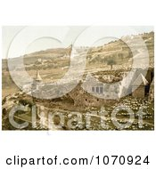 Photochrom Of The Valley Of The Tombs Of Jehoshaphat Jerusalem Israel Royalty Free Historical Stock Photo by JVPD