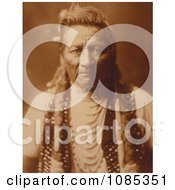PioPio Maksmaks Free Historical Stock Photography