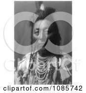 Plenty Coups Apsaroke Native American Man Free Historical Stock Photography