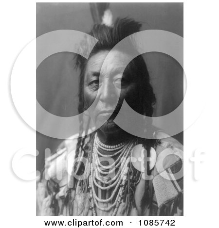 Plenty Coups, Apsaroke Native American Man - Free Historical Stock Photography by JVPD
