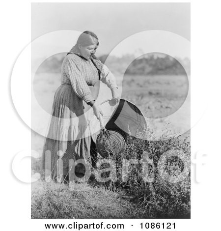 Pomo Woman Gathering Seeds - Free Historical Stock Photography by JVPD