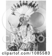 Pretty Hawk Sioux Indian Chief Free Historical Stock Photography