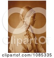 Profile Of A Cheyenne Native Woman Free Historical Stock Photography