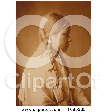 Photos of braids 1 royalty free stock photography by for Plenty of fish cheyenne