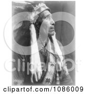 Raven Blanket Free Historical Stock Photography