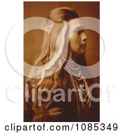 Sawyer Nez Perce Indian Free Historical Stock Photography