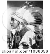 Sego Shoshone Indian Free Historical Stock Photography