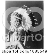 Sioux Indian Named Afraid Of Eagle Free Historical Stock Photography