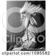 Sioux Native American Man Named Whirling Hawk Free Historical Stock Photography