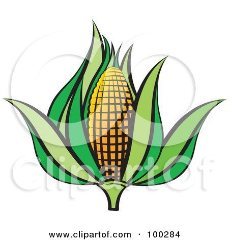 Royalty-Free (RF) Clipart Illustration of an Ear Of Corn With Green Foliage by Lal Perera