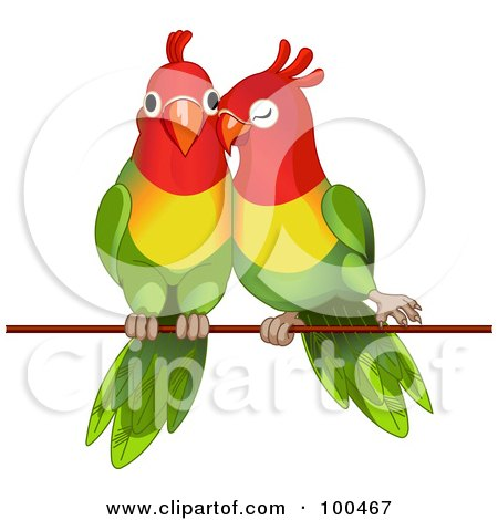 Royalty-Free (RF) Clipart Illustration of a Pair Of Lorikeets Cuddling On A Wire by Pushkin