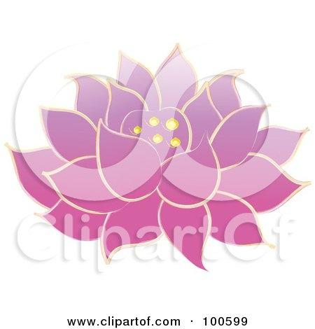 Pink Lotus Drawing Pink Lotus Flower Fully