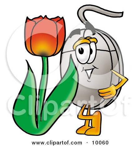 Computer Mouse Mascot Cartoon Character With a Red Tulip Flower in the Spring Posters, Art Prints