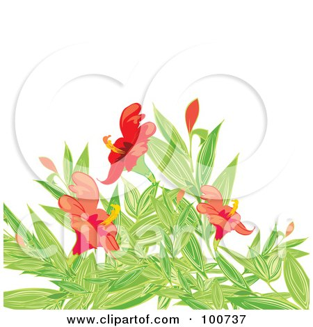 Royalty-Free (RF) Clipart Illustration of a Background Of Red Flowers And Green Foliage Over White by MilsiArt