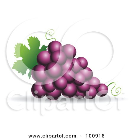 Royalty-Free (RF) Clipart Illustration of a 3d Realistic Purple Grape Bundle by cidepix