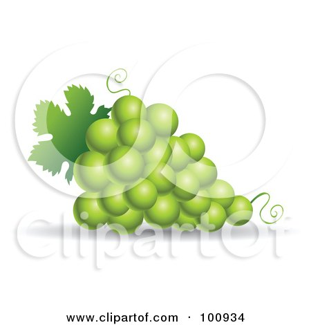 Royalty-Free (RF) Clipart Illustration of a 3d Realistic Green Grape Bundle by cidepix