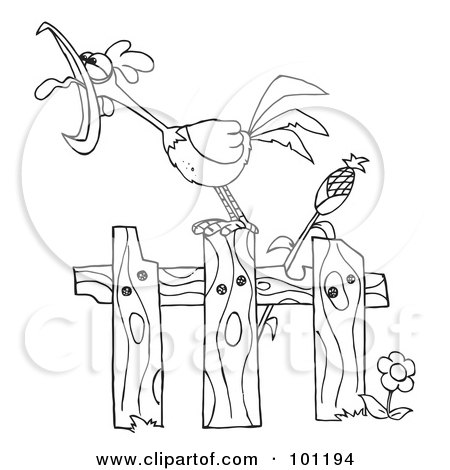 Royalty Free RF Clipart Illustration Of A Coloring Page Outline Loud Rooster Crowing On Fence By Corn Stalk Hit Toon