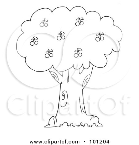 branch of cherry tree coloring page free printable coloring pages ... | 470x450