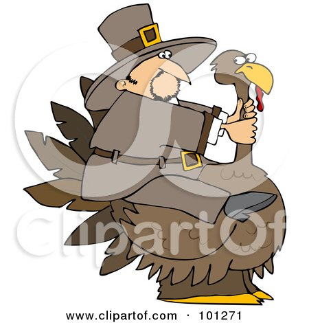 Royalty-Free (RF) Clipart Illustration of a Thanksgiving Pilgrim Trying To Ride A Huge Turkey by djart