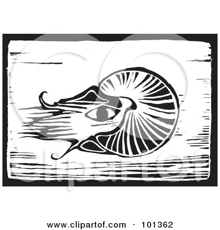 Royalty-Free (RF) Clipart Illustration of a Black And White Wood Engraving Squid Plaque by xunantunich