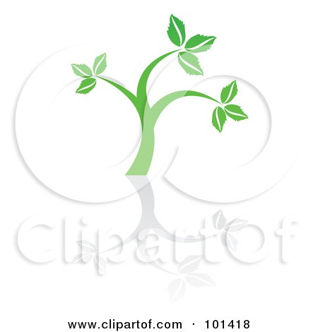 Royalty-Free (RF) Clipart Illustration of a Seedling Plant With A Reflection On White - 5 by MilsiArt