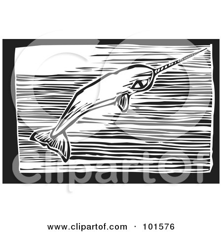 Royalty-Free (RF) Clipart Illustration of a Black And White Engraved Narwal Whale (Monodon monoceros) by xunantunich