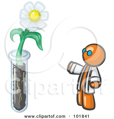 Orange Man Scientist By A Giant White Daisy Flower In A Test Tube Posters, Art Prints