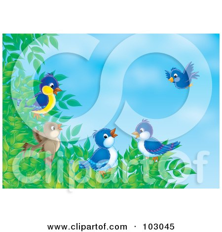 Royalty-Free (RF) Clipart Illustration of a Group Of Birds Gathering On A Tree Branch by Alex Bannykh