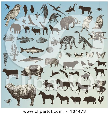Royalty-Free (RF) Clipart Illustration of a Digital Collage Of Animals And Animal Silhouettes On Blue by Anja Kaiser