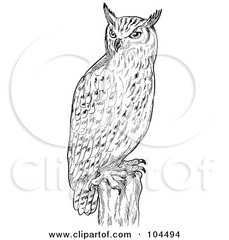 Royalty-Free (RF) Clipart Illustration of a Sketched Eagle Owl On A Post by patrimonio