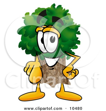 Tree Mascot Cartoon Character Pointing at the Viewer Posters, Art Prints
