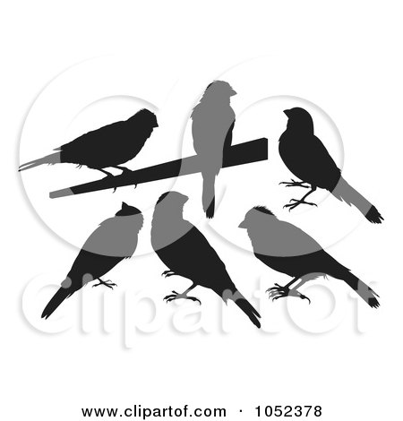 Royalty-Free Vector Clip Art Illustration of a Digital Collage Of Black Silhouetted Canaries by Any Vector