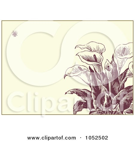 RoyaltyFree Vector Clip Art Illustration of a Calla Lily Flower Invitation