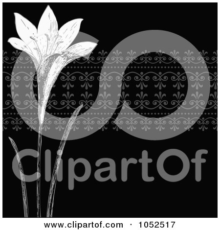 Clip Art Illustration of a Black And White Lily Invitation Background by