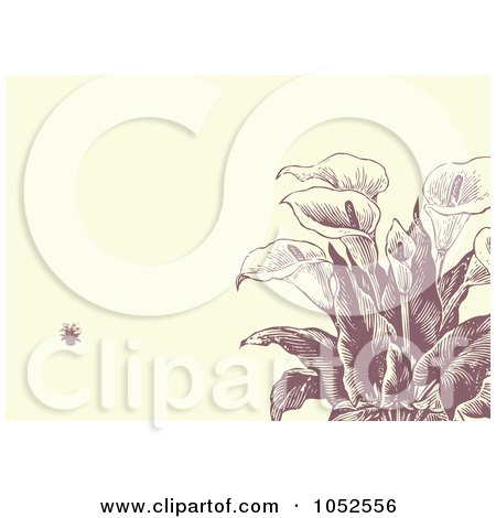 Royalty-Free Vector Clip Art Illustration of a Calla Lily Flower Invitation Background - 2 by BestVector