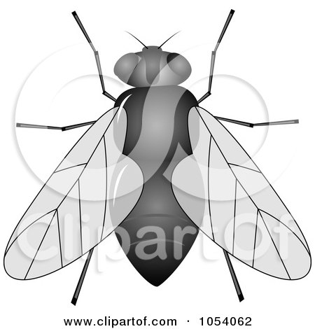 Royalty-Free Vector Clip Art Illustration of a House Fly by vectorace