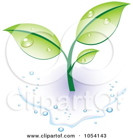 Royalty-Free Vector Clip Art Illustration of a Dewy Green Plant In A Puddle Of Water by vectorace