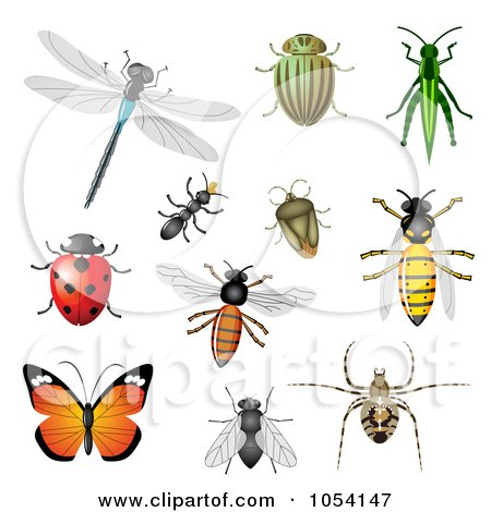Royalty-Free Vector Clip Art Illustration of a Digital Collage Of Insects by vectorace