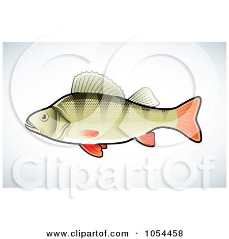 Royalty-Free (RF) Perch Fish Clipart, Illustrations, Vector ...