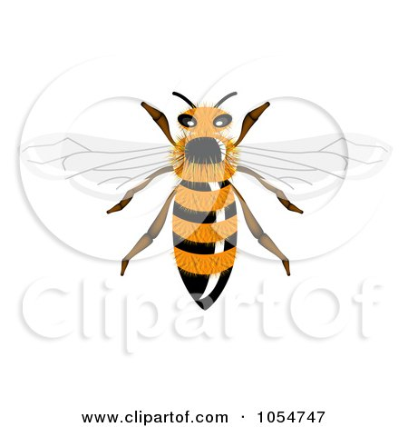 Royalty-Free Vector Clip Art Illustration of a Furry Bee by vectorace