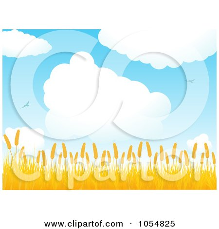 Royalty-Free Vector Clip Art Illustration of a Summer Crop Below A Cloudy Sky by elaineitalia