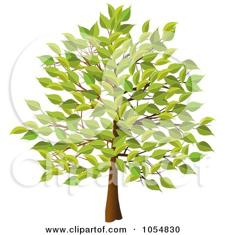 Free Clipart Vector on Royalty Free Vector Clip Art Illustration Of A Summer Tree By Elaine