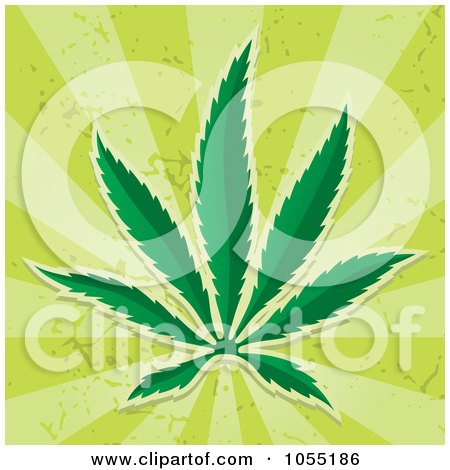 Royalty-Free Vector Clip Art Illustration of a Cannabis Leaf On Green Rays by Any Vector