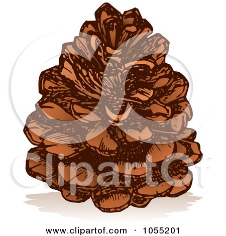 Royalty-Free Vector Clip Art Illustration of a Pine Cone by Any Vector