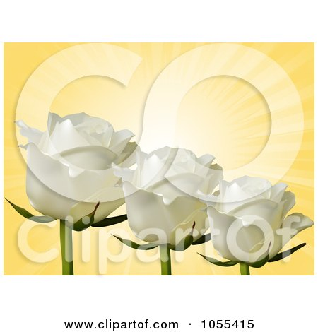 Royalty-Free Vector Clip Art Illustration of Three White Roses On Yellow Rays by elaineitalia
