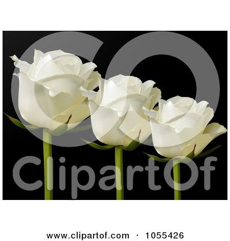 Royalty-Free Vector Clip Art Illustration of Three White Roses On Black by elaineitalia
