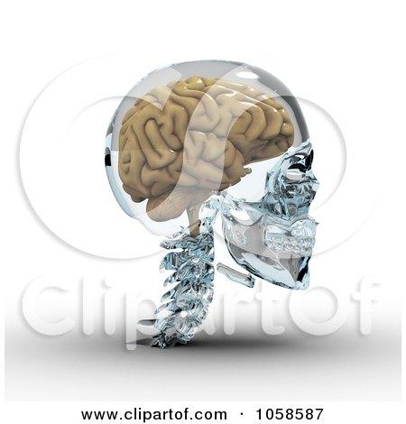 3d Brain In A Glass Skull - 2 Posters, Art Prints
